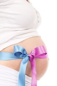WF pregnancy blog