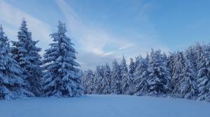 snow-3183518_1920